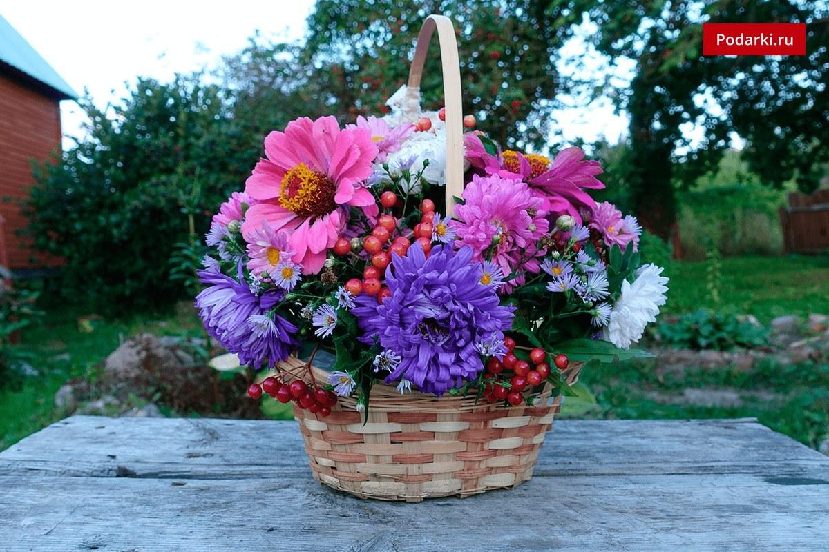 Цветы в горшочке с описанием