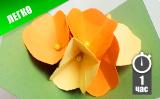 Pop-up открытка с цветами