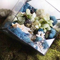 Светильник-флорариум Living ocean blue